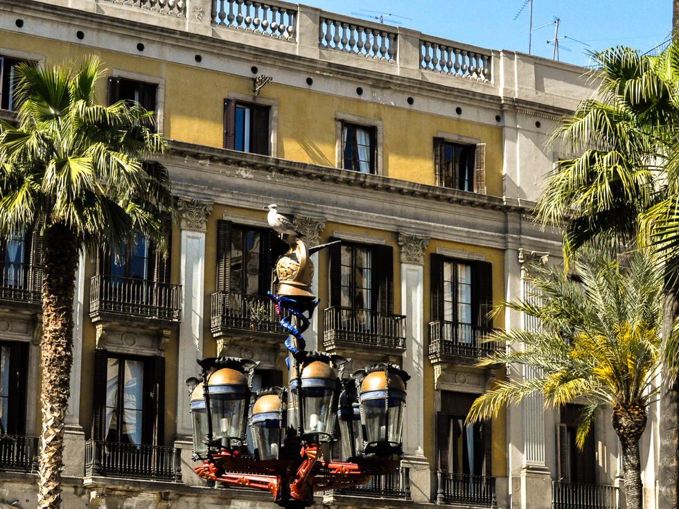 Barcelona - Goldhelmlatern am paza royale
