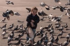Barcelona - Spaß beim Taubenfüttern
