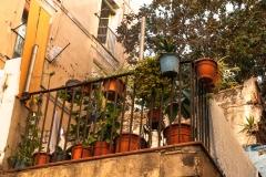 Barcelona - der Blumenbalkon